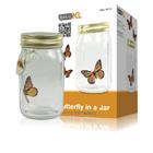Vaso di vetro con farfalla - basicXL-0
